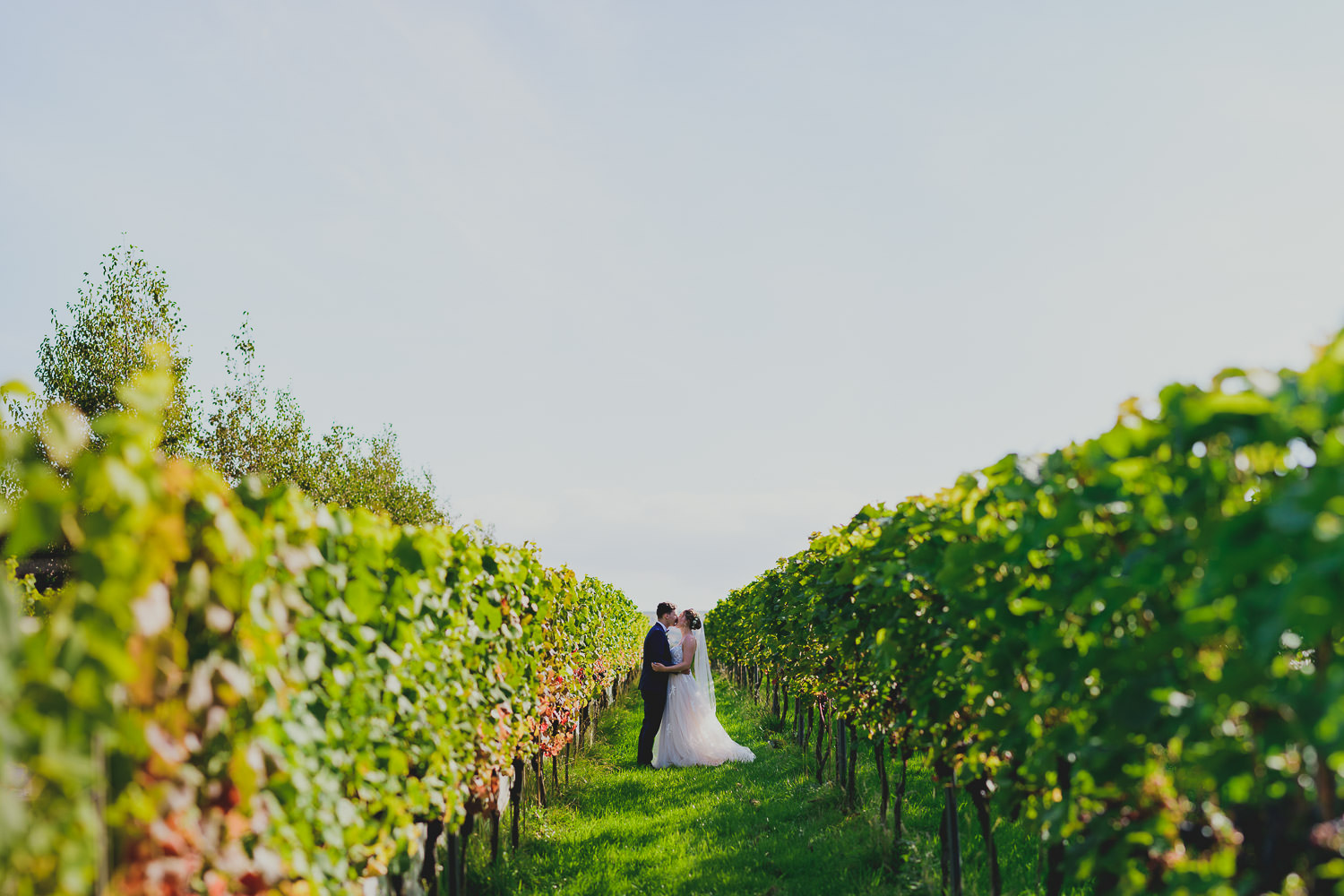 Trevibban Mill Winery Wedding